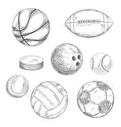 Sport balls and ice hockey puck sketches vector
