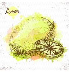 Watercolor lemon sketch vector