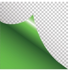 Green sticker with curled corner vector image