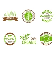 Round eco green stamp label of healthy organic vector