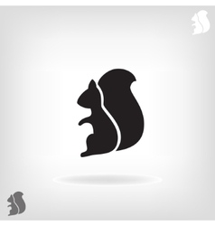 Squirrel isolated on a white backgrounds vector
