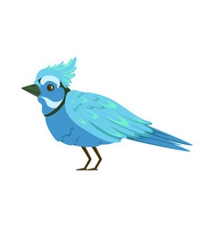 Beautiful blue bird colorful vector