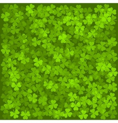 Clover Leaves Background Green Texture vector image vector image