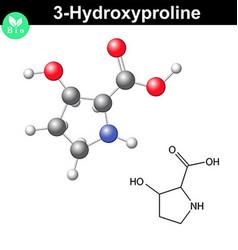 Hydroxyproline non essential heterocyclic amino vector image vector image