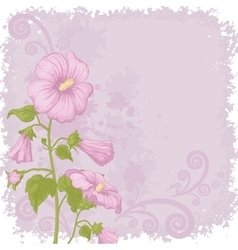 Holiday background with mallow flowers vector
