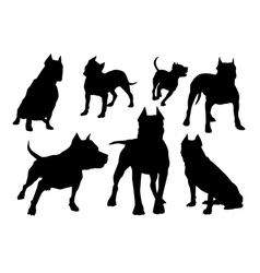 Amstaff silhouettes set vector