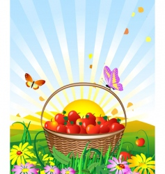 apple basket vector image vector image