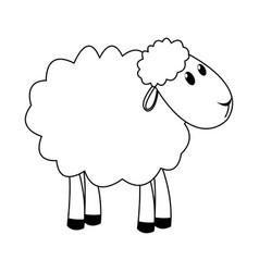 Curly lamb christmas manger religion vector
