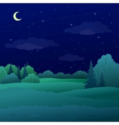 landscape night summer forest vector image vector image