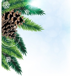 Pine branches with cones vector