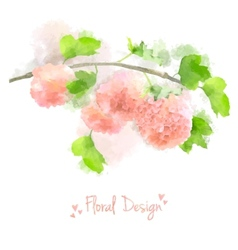 Watercolor flowers hydrangea vector