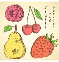 Sketch fruits and berries in vintage style vector