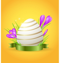 Easter card with egg and violet crocuses vector