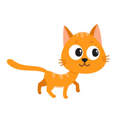Cute and funny red cat character curious playful vector