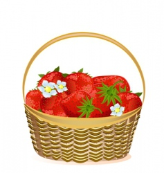 basket of strawberries with flowers vector image