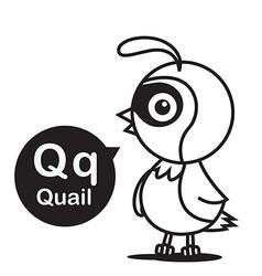 Q Quail cartoon and alphabet for children to vector image
