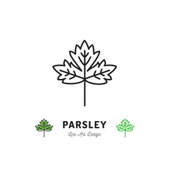 Parsley leaf icon vegetables logo spice thin line vector