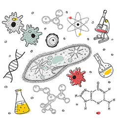 Biology sketches on school board vector image vector image