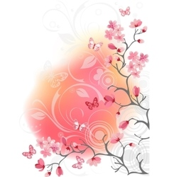 cherry blossom tree white background vector image