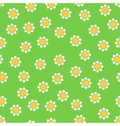 Seamless camomile pattern vector