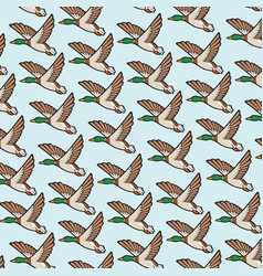 Background pattern with mallard duck flying vector