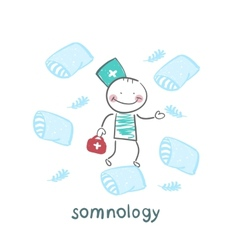 somnology flies on pillows vector image vector image