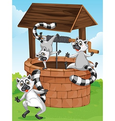 Three lemurs at the man-made well vector image