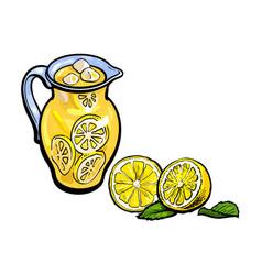 sketch lemonade glass jug sliced lemons set vector image vector image