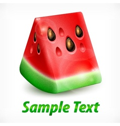 Watermelon on white  text vector