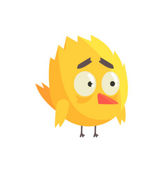 cute little yellow upset chick bird standing vector image