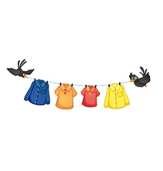 Four different clothes hanging with birds vector image