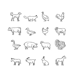 Farm animals thin line icons set outline vector