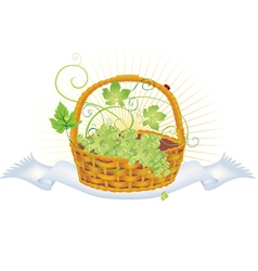 Wicker basket with grape vector