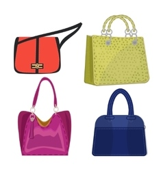women leather color handbags isolated on white vector image