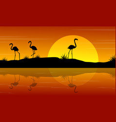 Flamingo at sunset scenery vector