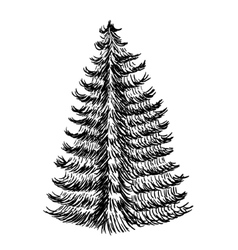 Hand drawn sketch of christmas trees icon with a vector