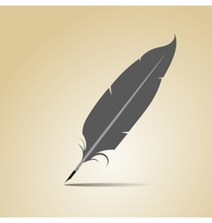 Feather on a yellow background vector