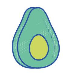Delicious avocado fruit with protein nutrition vector