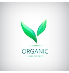 Eco logo organic product shop icon vector
