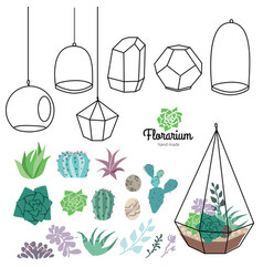 Glass terrariums with beautiful succulents vector