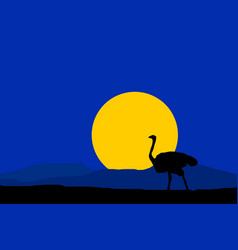 night nature with black silhouette ostrich vector image vector image