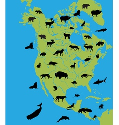 Animals on the map of north america vector