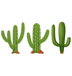 Different shapes of cactus vector