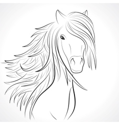 Sketch of horse head with mane on white vector