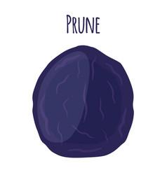 Prune dried fruit tasty plum vegetarian snack vector