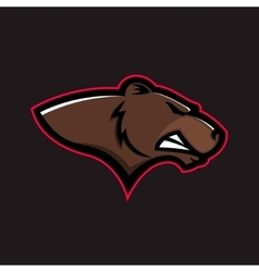 Brown bear head Grizzly head vector image