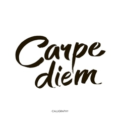 Carpe diem in latin means catch the moment hand vector