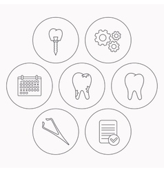 Dental implant caries and tooth icons vector
