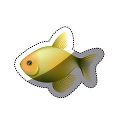 Colorful picture fish aquatic animal vector