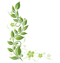 Leaves floral element vector image vector image